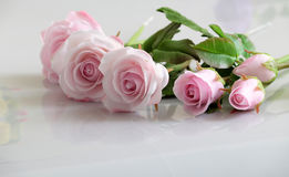 Clay art, pink roses flower Stock Image