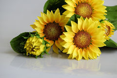 Clay art, yellow sunflower pot Royalty Free Stock Photography