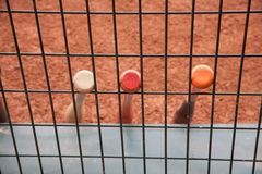 Clay baseball field Stock Images