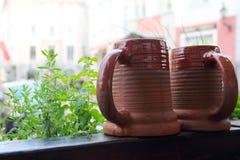 Clay beer mugs Royalty Free Stock Photography