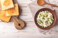 Goat cream cheese with green onions, dip sauce Royalty Free Stock Photography