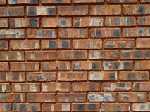 Clay Brick Wall rouge Images libres de droits