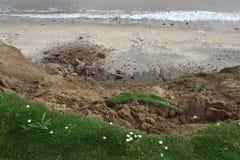 Clay cliff erosion. Royalty Free Stock Photos