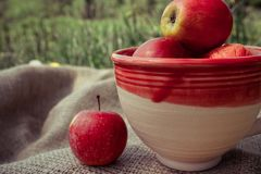 Clay cup with apples royalty free stock images