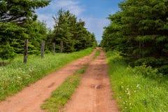 Clay Dirt Road em PEI rural Imagens de Stock Royalty Free