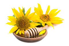 Clay dish with honey drizzler and  sunflowers Royalty Free Stock Photo