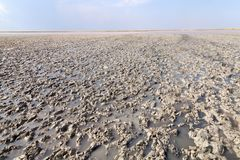 Clay in flat plain, steppe, salt, salt lake, heat and sky. A typical landscape on the Arabatskaya arrow, the Ukrainian part of the Crimea Royalty Free Stock Photos
