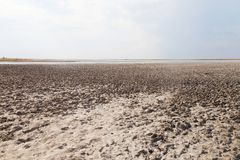 Clay in flat plain, steppe, salt, salt lake, heat and sky. A typical landscape on the Arabatskaya arrow, the Ukrainian part of the Crimea Royalty Free Stock Photography