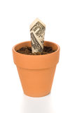 Clay flower pot and cash Royalty Free Stock Image