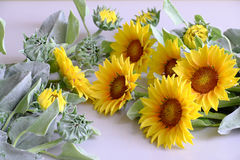 Clay flower, sunflower bouquet Royalty Free Stock Image