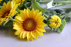 Clay flower, sunflower bouquet Stock Photo