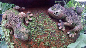 Clay Gecko sculpture with green moss on water jar in garden Stock Photos