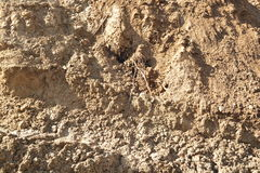 Clay Ground Inclined Slope. Photo made in Russian Sibiria Royalty Free Stock Photography
