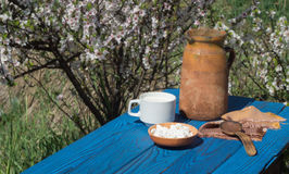 Clay jug, a cup of milk and cottage cheese on a table of blue bo Stock Photo