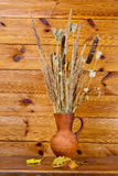 Clay jug with dry stalks of a reed Royalty Free Stock Photos
