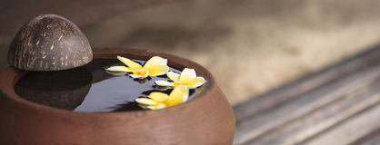 Clay jug with flower plumeria or frangipani decorated on water. Bowl in zen style for spa meditation mood. Touching nature. Clay jug relaxing and peaceful with stock photos