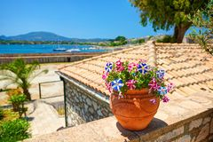 Clay jug with magenta flowers on stone wall. Classical yachts in Mediterranean sea. Kerkyra castle. Greece flag white blue colors. Flowers. Greece holidays Royalty Free Stock Image