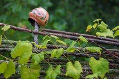 Clay Jug On une barrière Village biélorusse Paysage rural - Belarus Photo stock