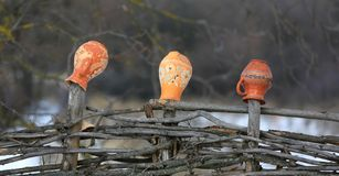 Clay jugs on a wooden fence Stock Images