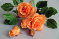 Clay orange roses flower on white background Stock Photography