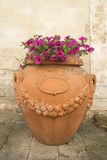Clay pot with flowers on sidewalk. Royalty Free Stock Photography