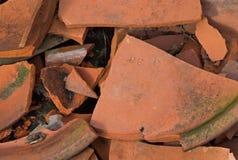 Clay Pot Fragments com musgo Imagens de Stock