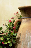 Clay pots amd flowers Royalty Free Stock Photos