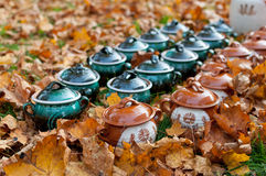 Clay pots in autumn leaves Royalty Free Stock Images