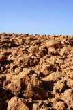 Clay red agriculture textured soil Stock Photography
