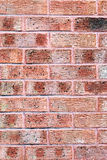 Clay red brick wall texture and background Stock Images