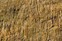 Clay Rock Walll Stock Photography