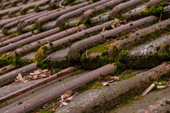Clay Roof Shingles European German Moss Dirty Old Shed Top Close Stock Photo
