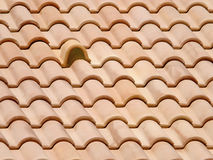 Clay roof tiles. Neoromanesque Portuguese clay roof tiles pattern interrupted by a special ventilation tile Royalty Free Stock Photo