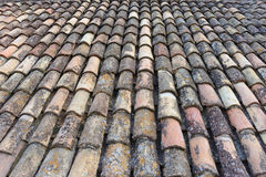 Clay roof tiles. Algae, lichen and efflorescence deposits on old clay roof tiles Royalty Free Stock Images