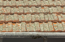 Clay Roof Tiles Covered i lav med skalningsavloppsrännor arkivbilder