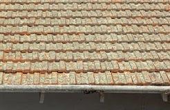 Clay Roof Tiles Covered i lav med skalningsavloppsrännor arkivbild