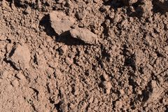 Clay with sand. The dug up earth consisting of clay and sand, plowed field royalty free stock image