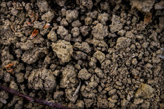 Clay soil closeup. Brown background Royalty Free Stock Image