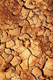 Clay soil is covered with cracks Stock Photography