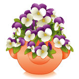 Clay Strawberry Jar With Johnny Jump Ups. Spring garden of lavender & white Johnny Jump Ups (Pansies) growing from the top and sides of terracotta clay Royalty Free Stock Image