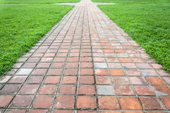 Clay Tiles Walkway and grass Royalty Free Stock Image