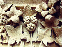 Clay tree pattern shoot in sepia Stock Photos