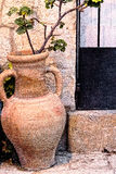 Clay vase with jug ears used as a plant pot Stock Photo