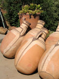 Clay vases (amphors). Beautiful clay amphors in Morocco Stock Image