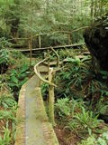 Clayoquot Island Preserve Stock Images