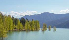 Cle Elum jezioro Zdjęcie Stock