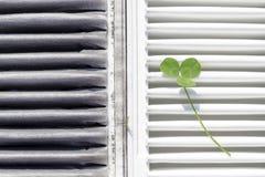Clean air concept Stock Photo