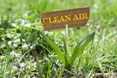 Clean air. On wooden sign in garden with white spring flower stock photography