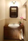 clean badrum Fotografering för Bildbyråer
