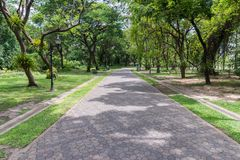 Clean brick pathway along in the urban park. Royalty Free Stock Photos
